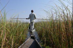 Afrika 2017: Okavangodelta – zu Lande, zu Wasser und in der Luft