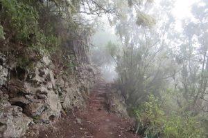 La Gomera – Rund um El Cedro