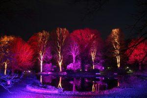 Winterleuchten 2014 – Lichtzauber im Westfalenpark
